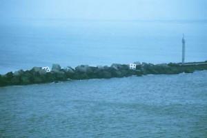 The Domino Sea, 1988